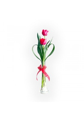 Tulipanes en florero