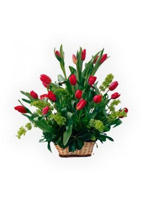 Canasta de 20 tulipanes