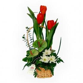 Canasta con 3 tulipanes