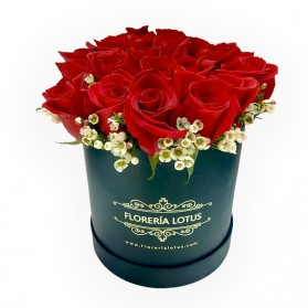 Box grande de 24 rosas