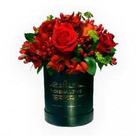 Box de 12 rosas