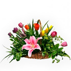 Canasta de tulipanes