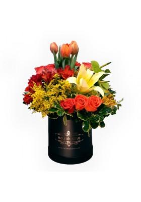 Box de flores mixtas