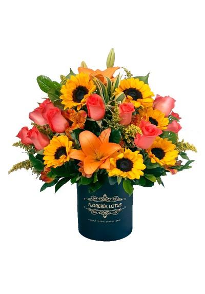 Box grande de rosas y girasoles