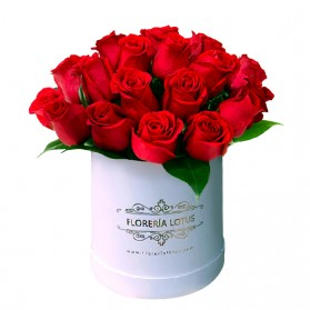 Box blanco de 24 rosas