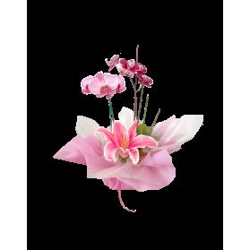 Planta de orquídea decorada